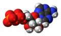 Adenosine-diphosphate-anion-3D-spacefill.png