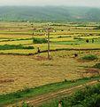 Agricultura de la Zona Torrida (7350547596).jpg