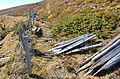 Albeck Seebachern Neuwirtalm N-Grenze 25102013 380.jpg