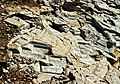 Aliki ancient marble quarry 20.jpg