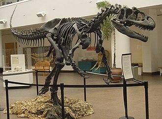 Jurassic National Monument - Allosaurus mounted skeleton
