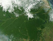 Imagem de satélite da floresta Amazônica.