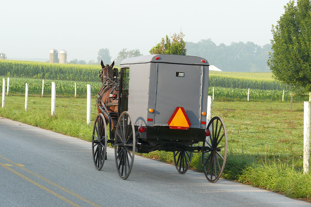 Amish dating commercial