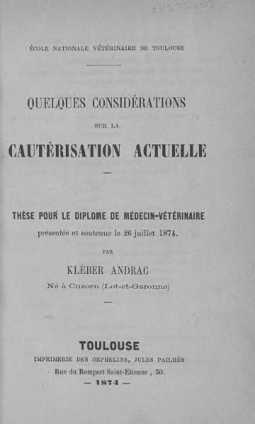 File:Andrac - Quelques considérations sur la cautérisation actuelle.djvu