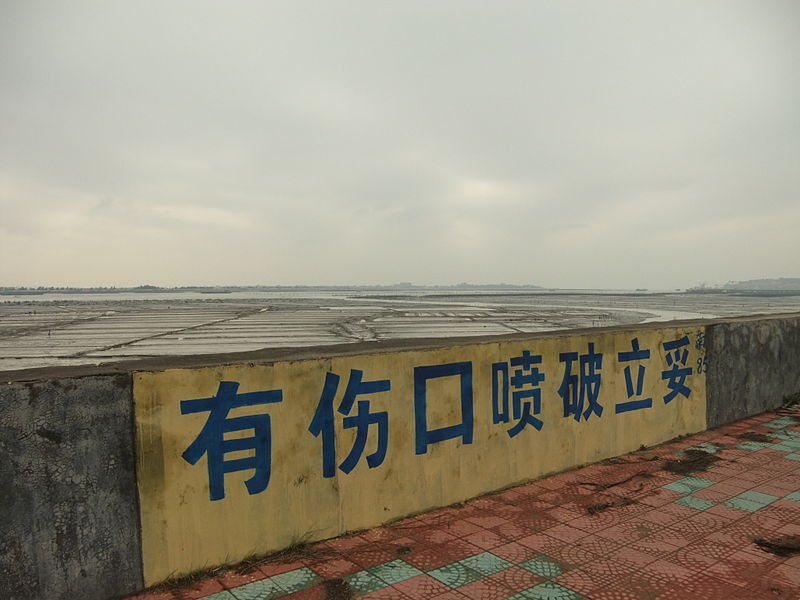 File:Anhai Bay - roadside ads - DSCF8866.JPG