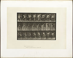 Animal locomotion. Plate 475 (Boston Public Library).jpg