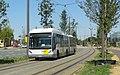 Antwerpen - Antwerpse tram, 23 juli 2019 (179, Noorderlaan).JPG