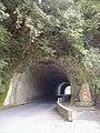 Aono Doumon - panoramio.jpg