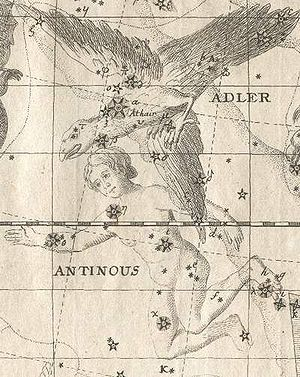 "Antinous (constellation) - Constellations Antinous (below) and Aquila (""Adler"" in German). From Johann Bode's Vorstellung der Gestirne (1782)"