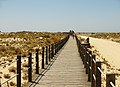 Armona Island (Portugal) (49850264878).jpg