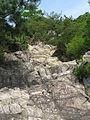 Ashiya Rock Garden2.jpg