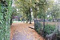 Autumn Leaves, Miners Welfare Park, Bedworth - geograph.org.uk - 583133.jpg