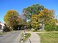 Autumn in melluzi - panoramio (2).jpg