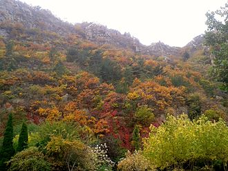 Autumn mountain foliage Autumn mountain foliage in dalian (2).jpg