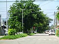 Av. Francisco I. Madero, Col. Centro. - panoramio.jpg