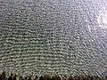 Büyükçekmece Kumsalı ve Marmara Denizi, Mart 2014 - panoramio.jpg