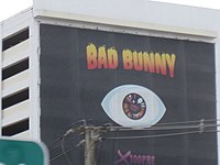 Bad Bunny billboard on the side of the Hospital Pavia Hato Rey building.jpg