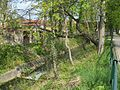 Bad Langensalza Salza.jpg