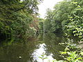 Badger Dingle - Upper Pool 01.jpg