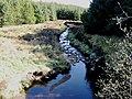 Ballinloan Burn (Downstream) - geograph.org.uk - 429704.jpg