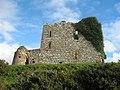 Ballycullen Castle - geograph.org.uk - 294975.jpg