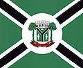 Bandeira de Altamira.jpg