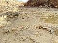 Barakajur river 06.jpg