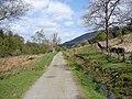 Bargaly Glen Track - geograph.org.uk - 1281961.jpg
