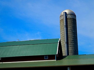 Barn Roof and a Silo - panoramio.jpg