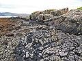 Basalt dyke - closer view - geograph.org.uk - 955134.jpg