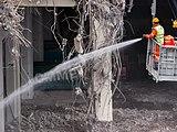 Basel Exhibition demolition-20120505-RM-130742.jpg