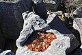 Bauchman Rocks - panoramio (5).jpg