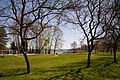 Beer Sheva Park, Seattle, March 2013.jpg