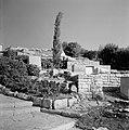 Begraafplaats te Safad (Safed) met terassen met staande en liggende zerken en b…, Bestanddeelnr 255-4015.jpg