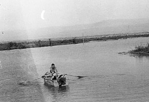 Beit HaArava - Working the fish ponds at Beit Ha'arva. 1940s