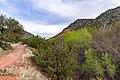 Bell Trail (38152971445).jpg