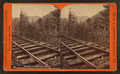 Below, Lightning Curve, towards, Point Lookout, on the B. G. R. R, by R. A. Bonine 2.png