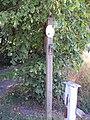 Benkid77 Puddington-Shotwick footpath 10 110809.JPG