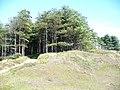 Berges Island - geograph.org.uk - 1417332.jpg