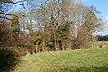 Beside a brook south of Broadwoodwidger - geograph.org.uk - 1701129.jpg