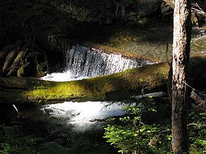 Big Quilcene River - Quilcene