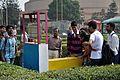 Bird in a Cage - Science Park - Science City - Kolkata 2015-12-31 8297.JPG