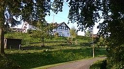 Birkenhof in Overath