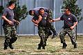 Black Sea Rotational Force DVIDS290537.jpg
