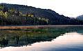 Bled (9515802970).jpg