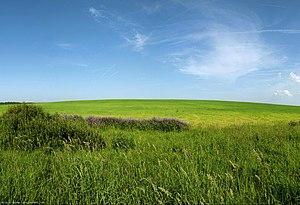 Vologda Oblast - Hills in Vologda Oblast. Northwest of the city of Vologda, close to the selo of Molochnoye.
