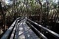 Boardwalk At The Freedom Trail.jpg