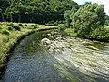 Bobr river wlen poland.jpg