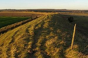 Bokerley Dyke - Bokerley Dyke on Martin Down