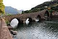 Borgo a mozzano, ponte della maddalena 00.JPG